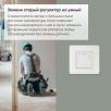 Терморегулятор Terneo SX Wi-Fi  (DS Electronics)